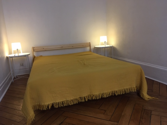 Location appartement T2 Lyon 7 - Photo 2