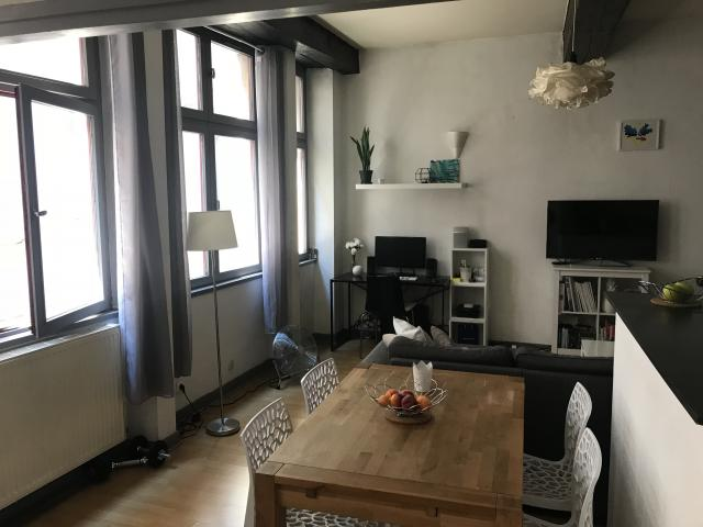 Location appartement T1 Lyon 2 - Photo 4
