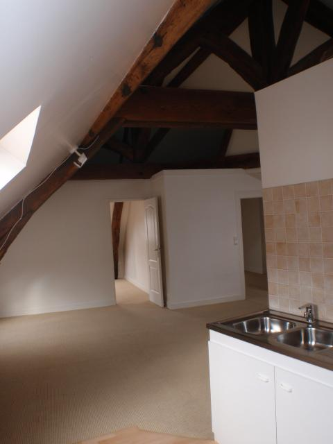 Location appartement T3 Tours - Photo 3