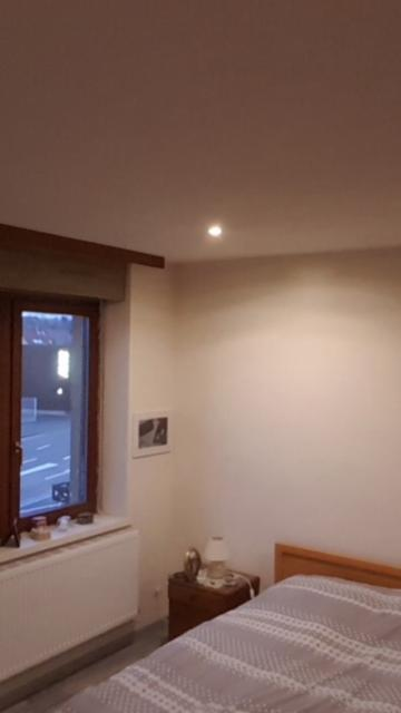 Location appartement T3 Haguenau - Photo 1