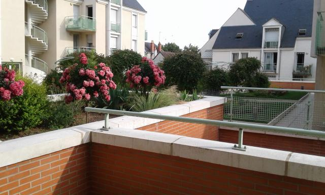 Location appartement T3 Amboise - Photo 1
