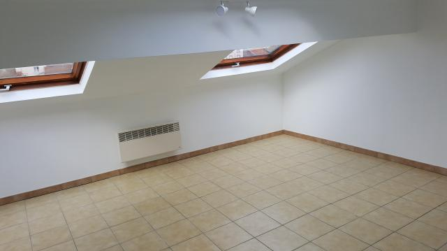 Location appartement T3 Nancy - Photo 3