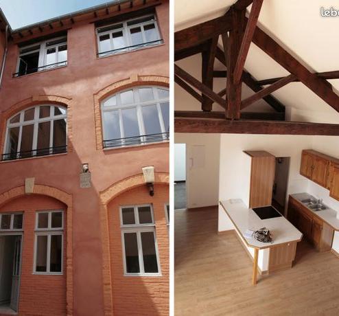 Location immobilière par particulier, Albi, type appartement, 55m²