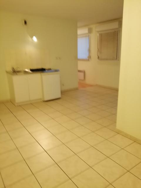 Location appartement T2 Belfort - Photo 1