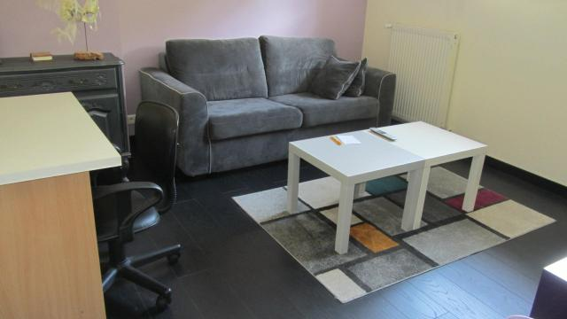 Location appartement T2 Villars les Dombes - Photo 1