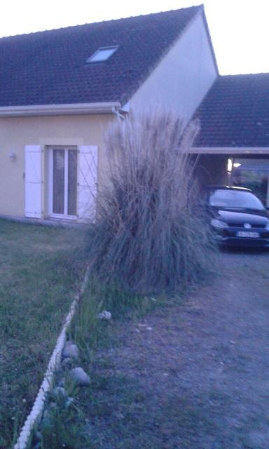 Location maison F7 Denguin - Photo 1