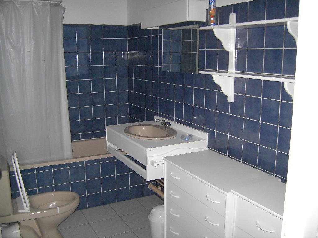 Location appartement T1 St Avold - Photo 2
