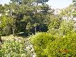 Location appartement T2 Draveil - Photo 2