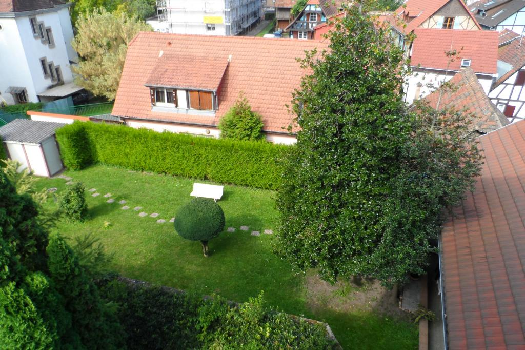 Location appartement T3 Schiltigheim - Photo 4