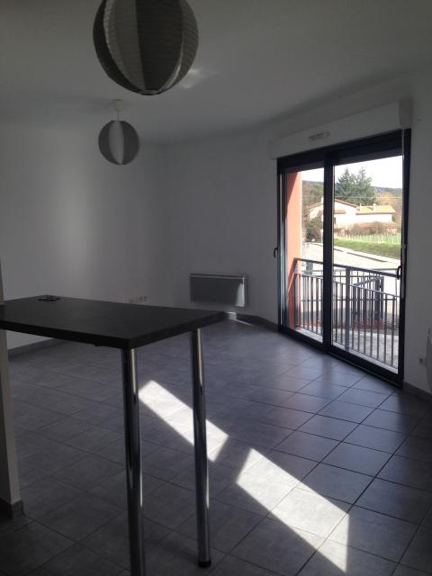 Location appartement T2 Dommartin - Photo 1