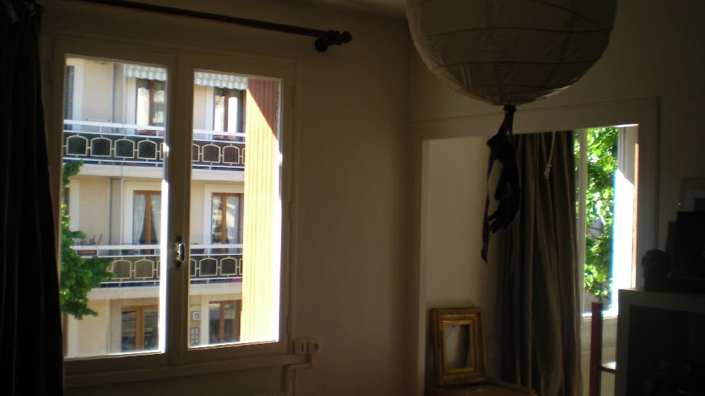 Location appartement T1 Lyon 3 - Photo 3