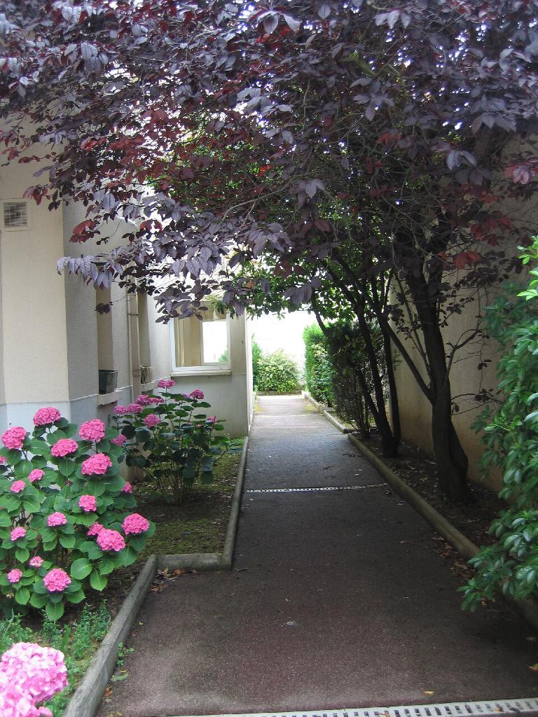 Location immobilière par particulier, Choisy-le-Roi, type appartement, 26m²