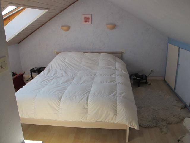 Location appartement T3 Mulhouse - Photo 4