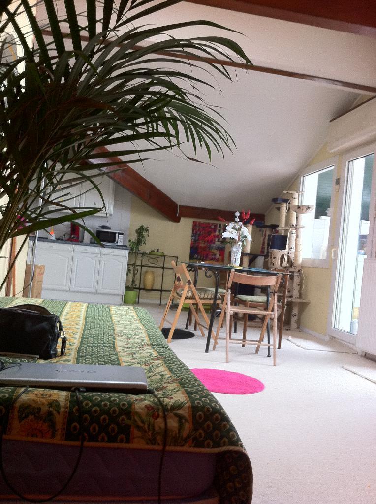 Location particulier à particulier, appartement, de 100m² à Hendaye
