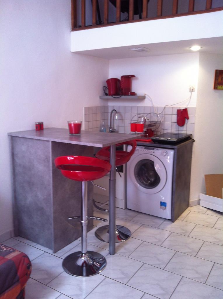 location d 39 appartement t1 meubl de particulier particulier lyon 69007 690 35 m. Black Bedroom Furniture Sets. Home Design Ideas