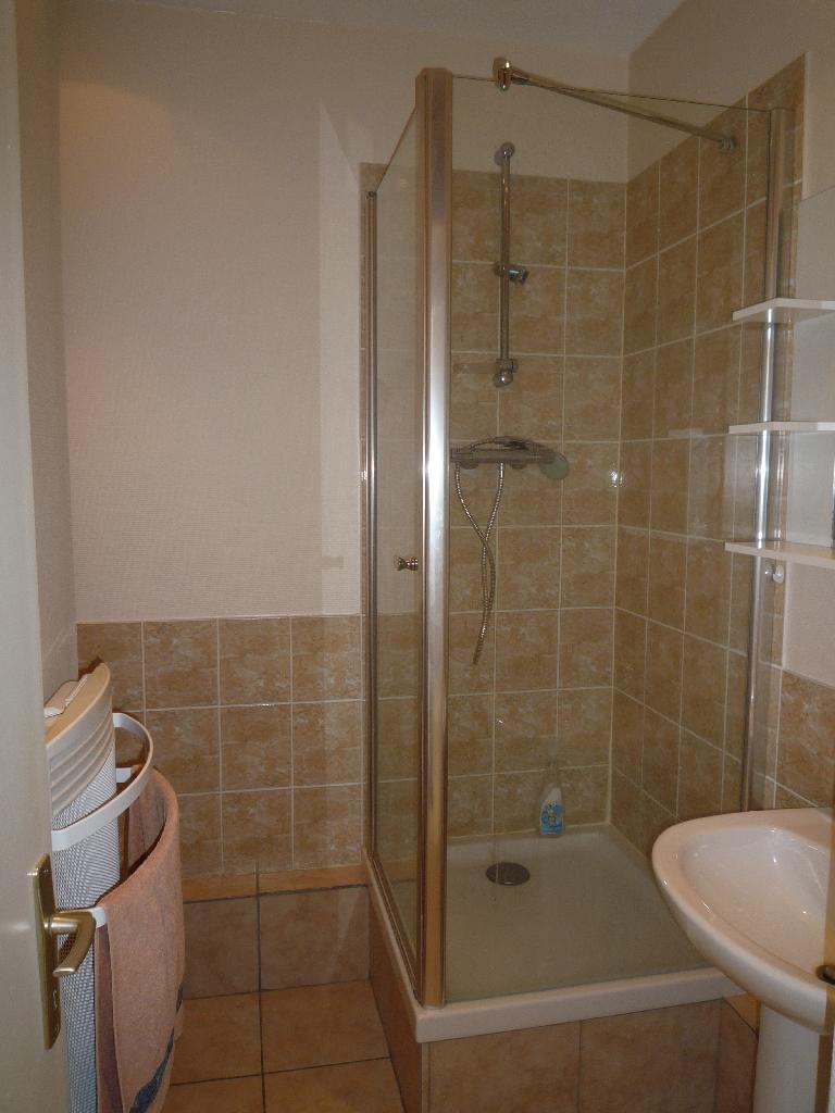location de studio meubl de particulier lyon 69007 510 24 m. Black Bedroom Furniture Sets. Home Design Ideas