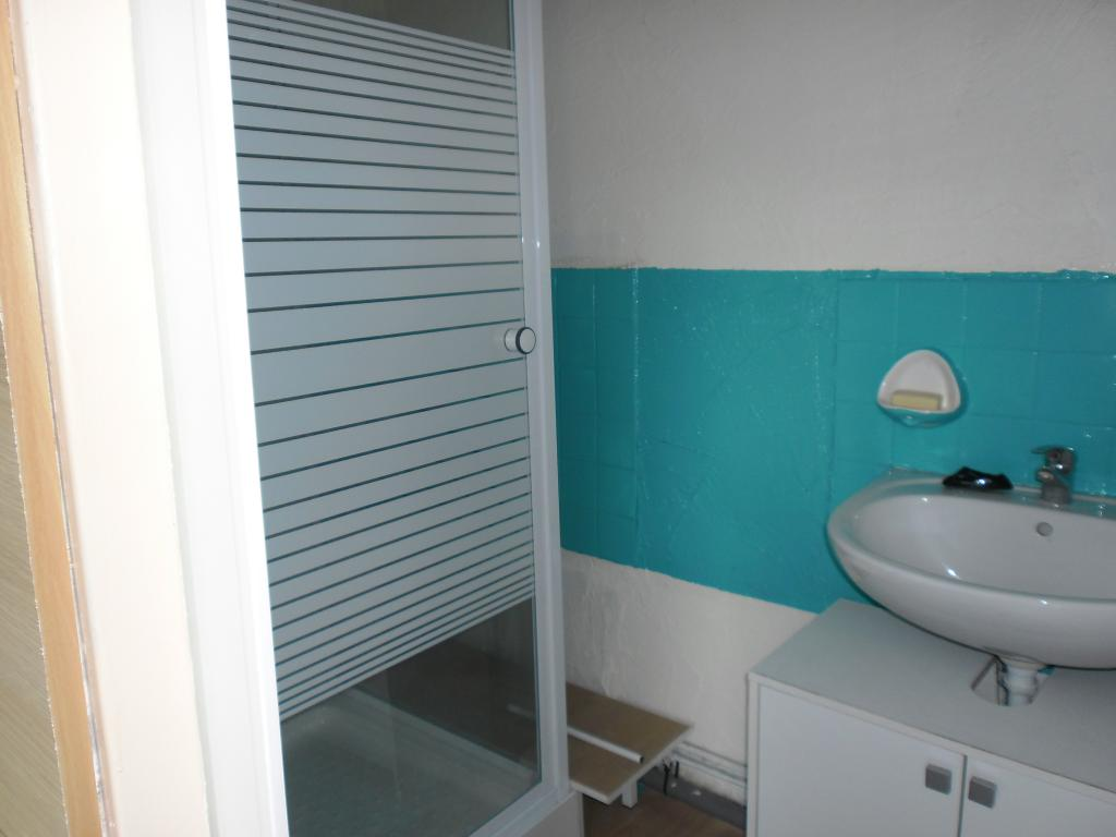 Location appartement T1 Lyon 8 - Photo 3
