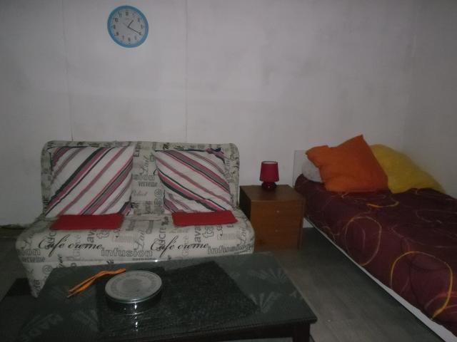 Location appartement T1 Lyon 8 - Photo 1