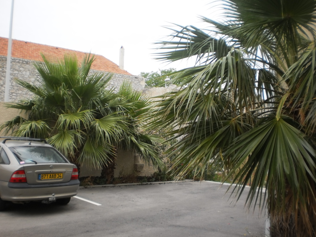 Location appartement T3 Frontignan - Photo 4
