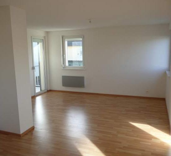 Location appartement T5 Ensisheim - Photo 2