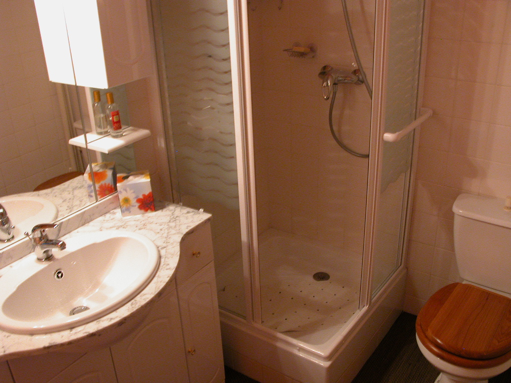 location d 39 appartement t2 meubl sans frais d 39 agence vichy 410 29 m. Black Bedroom Furniture Sets. Home Design Ideas