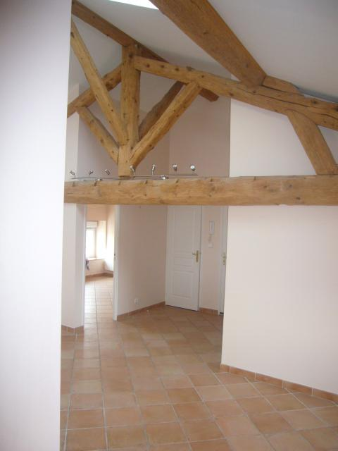 Location appartement T3 Champagne au Mont d'Or - Photo 4