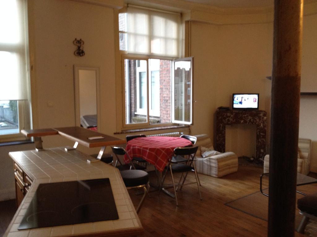 location d 39 appartement t2 meubl de particulier lille 910 65 m. Black Bedroom Furniture Sets. Home Design Ideas