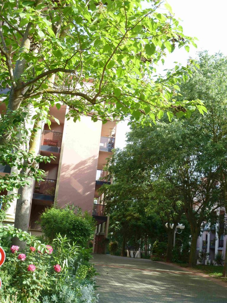location d 39 appartement t1 entre particuliers toulouse 570 36 m. Black Bedroom Furniture Sets. Home Design Ideas