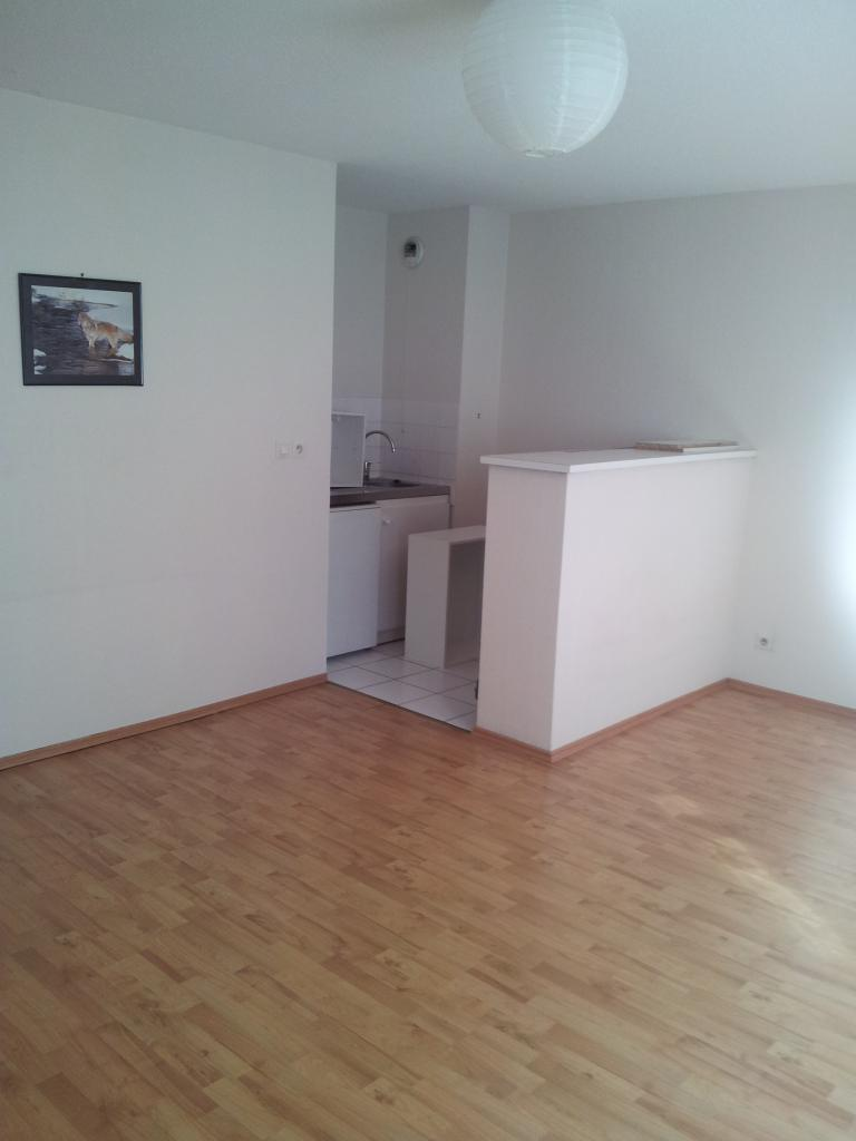 Location d 39 appartement t1 de particulier nancy 420 for Location appartement atypique nancy