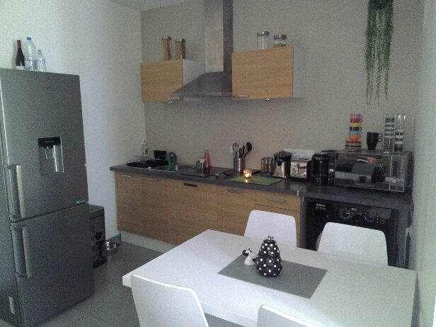 Location appartement T1 Sommieres - Photo 1