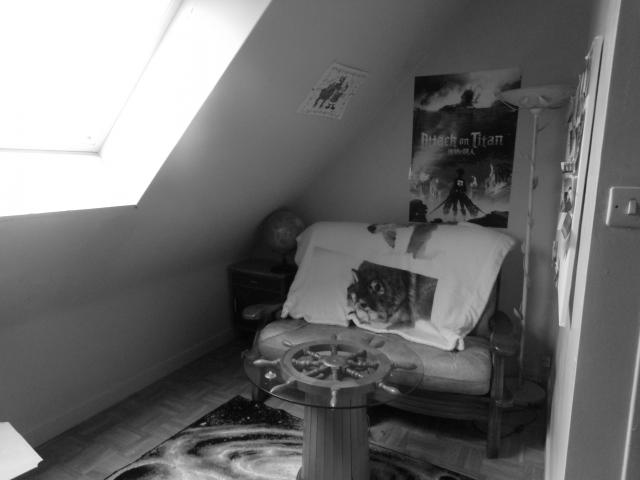 Location chambre Lannion - Photo 2