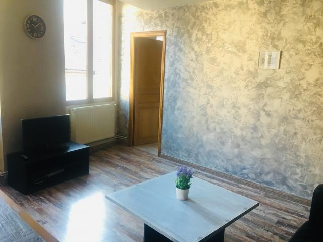 Location appartement T3 St Etienne - Photo 4