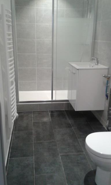 Location appartement T3 La Madeleine - Photo 3