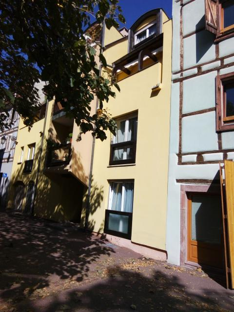 Location appartement T3 Colmar - Photo 3