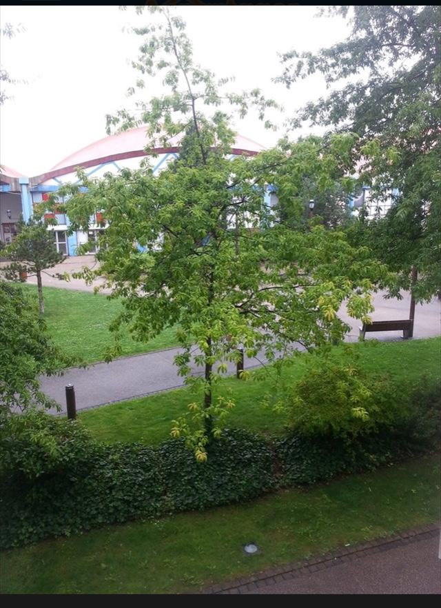 Location appartement entre particulier Aulnay-sous-Bois, chambre de 10m²