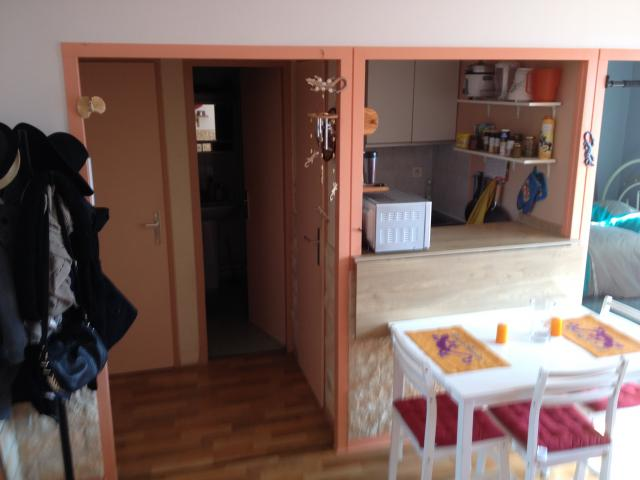 Location appartement T3 Grenoble - Photo 1