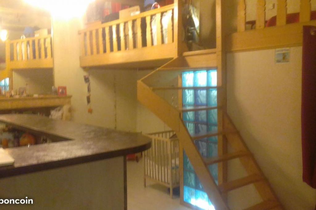 Appartement particulier à Lyon 01, %type de 30m²