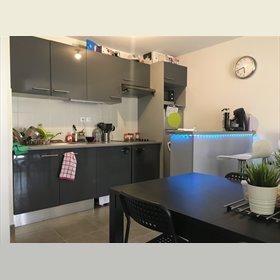 Colocation appartement castanet tolosan 349 for Combien coute une cuisine amenagee